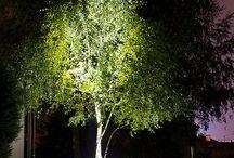 Décoration extérieur/Outdoor lighting / Ce tableau présente des exemples d'utilisations d'éclairage LED pour la décoration extérieure (projecteurs, spots, mini spots...).