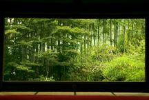JAPAN_Teien 庭園 / Japanese Garden / by Masaki Kawato