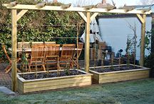 Pergola with Wires / Use stainless steel tensioned wires for training climbing plants in a timber pergola
