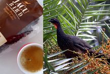 High quality Coffee / Koffie soorten