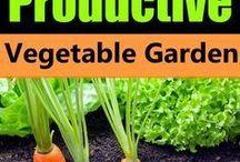 Secrets to a creative garden