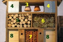 Insect hotels & bird houses