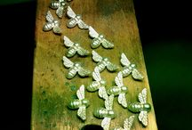 Nature Mementos / Jewellery. Nature. Wildlife. / by Bianca Jones