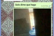 AlPedo