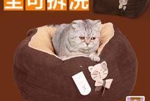 Le chat le plus triste d'Aliexpress / On lance l'opération un Like = 1 croquette pour ce pauvre chat chinois qui fait le mannequin gratos http://avis-express.com/le-chat-le-plus-triste-de-aliexpress/