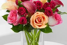 Mother's Day / Show your mom she's #1 by spoiling her with fun, food, and flowers! Shop here: http://bit.ly/YX0lR1.  / by FTD Flowers