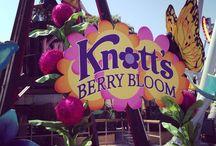 Knott's Berry Farm / Various Photos from Knott's