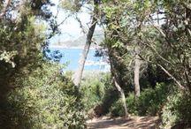L'île de Porquerolles - Var ☀️