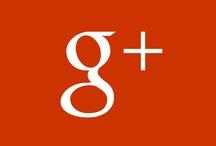 Google + / Key Figures
