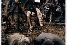 MUSÉE PHOTO / Musée photo basé sur la guerre du viet-nam.  J'ai decidé de choisir le guerre de vietnam car  elle a apportée des clichés très marquants qui montre les difficultés et l'horreur de la guerre. Même si cela nous parrait loin dans le temps encore de nombreux pays vivent sous ce rythme de vie difficile.