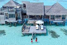 Maldives (MALİVLER)