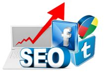 SEO Service / Contact Us for SEO Service