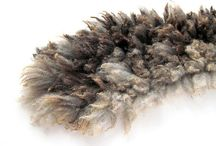 Woolyland / Raw wool. Who knows how beautiful it can be...