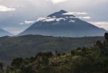 Rwanda / by Eyes on Africa Safaris