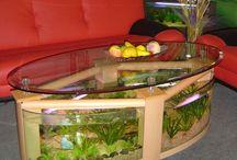 aqvarium