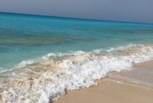 Coast north Egypt