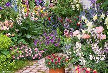 Living | Country Garden