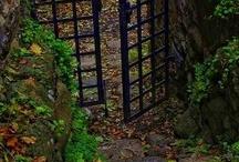 Doors / by Carolyn Murray