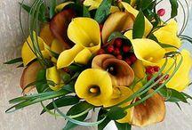 Flores / by Graziela Fortes