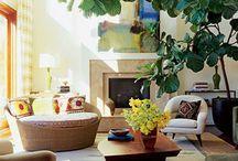 Indoor plants / by Katie Parks
