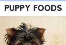 Puppies Supplies