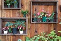 fence decor / by Treama Reed Couron