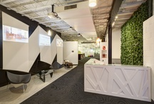 | Corporate Design | / by | Modest Maintenance |