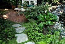 Garden corners / Ideas to spark up a dull corner in the garden...