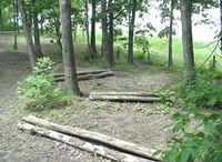 Horse Agility and Obstacle Ideas