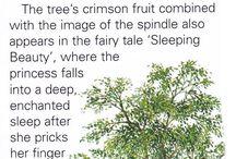 Pagan: trees