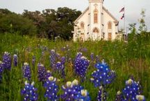 Texas / by Jillian Martin