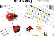 Bugs ~ Ladybug Theme / Everything ladybugs! Ladybug crafts, ladybug printables, ladybug activities for kids and more!  / by {1plus1plus1} Carisa