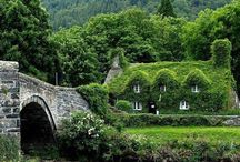 Ivy Covered English Cottages