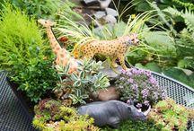 Fun garden / Decoration