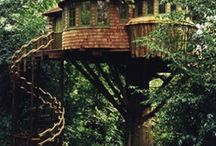 tree houses and more eco  ones / by Natalia Tejera