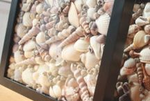 Sea Shells / by Becky Hayes
