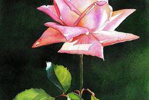 Roos schilderijen