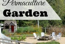 - PERMACULTURE -