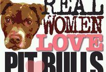 Love Those Pit Bulls