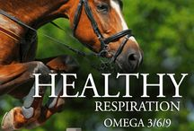 Horse Supplies / Horse Supplements, Horse Vitamins, Horse Care. Equine Mega Omega Complete is an all natural complete supplement for your horse. We have the tightest ratio of Omega 3's to Omega 6's on the market today. Learn more. www.o3animalhealth.com