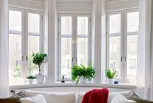 Floral design in Modern living room / Floral design in Modern living room