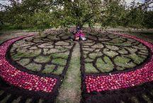 jardineria / jardineria/ plantas/ flores/ huerta en el hogar/ jardin / diseño vintage