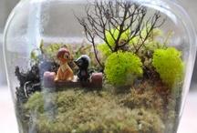 Miniature Gardening / terrariums, fairy, miniature gardens, moss, hypertufa, dwarf plants, miniature sculpture, tiny house, doll house