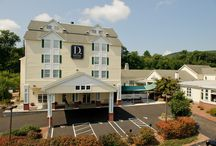 D. Hotel & Suites / Hotel in Western, MA