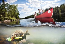 BWCA Fishing / Boundary Waters fishing for walleye, lake trout, northern pike and smallmouth bass. Canoe camping trips are perfect for fishing. Paddle a canoe, cast a lure and catch fish in the BWCA.