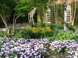 Southeast garden maintenance