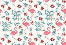 Candy flamingo