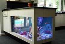 Aquarium voor in het nieuwe huis