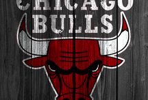 Nba/chicago