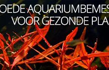 Aquarium artikelen / Goede / nuttige aquarium artikelen